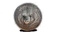 Magyar Éremkibocsátó Kft. - Mongolian_Gobi_Bear_Ag_r_PI_3